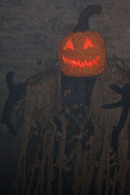Steve Hoffine - The Cave Pumpkin King